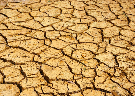 Potential impact of climate change