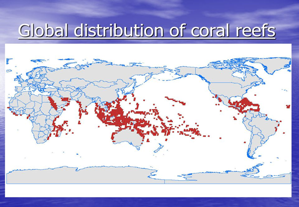 coral reefs distribution